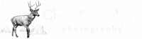 INVERT_BIG_TEXTChris-Kreymborg-final-logo-wide
